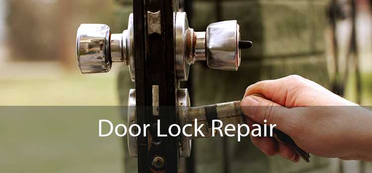 Door Lock Repair