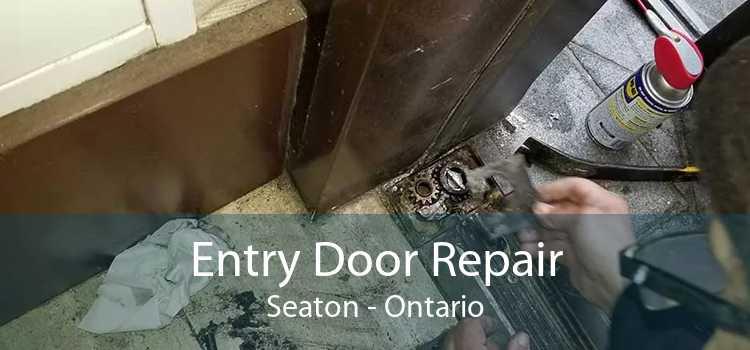 Entry Door Repair Seaton - Ontario