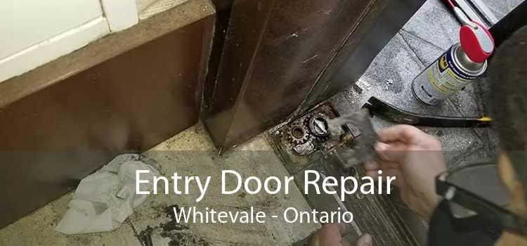Entry Door Repair Whitevale - Ontario