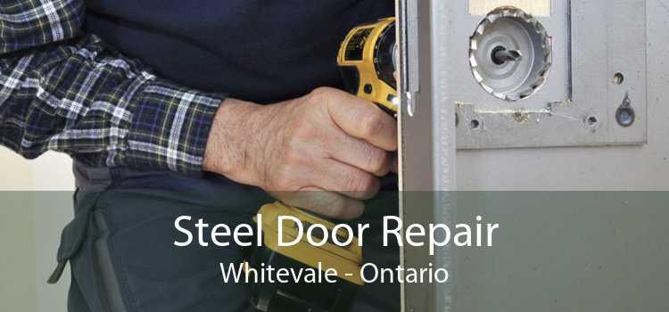 Steel Door Repair Whitevale - Ontario